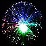 LBZEZR Multicolor LED Fiber Optic Lamp Light Holiday Wedding Centerpiece Fiberoptic
