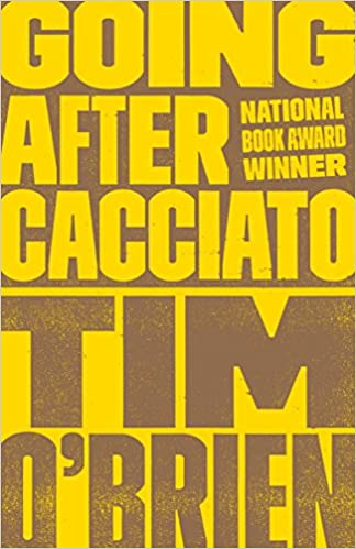 Image result for going after cacciato