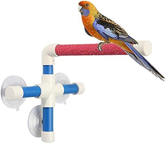 KEBY - Escalera para Loros de Agua con Ventosa para Juguetes de cacatúa, periquitos, etc.: Amazon.es: Productos para mascotas