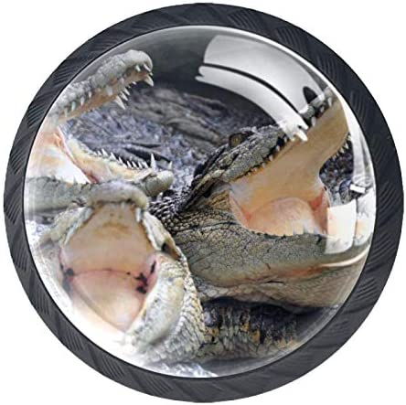 Keukenkast KnoppenWild Aniaml Crocodile Alligator GrappigKnoppen voor dressoirladen voor kast kast badkamer of kantoorPack van 4
