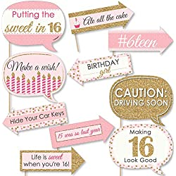 Big Dot of Happiness Funny Sweet 16 - 16th Birthday Party Photo Booth Props Kit - 10 Piece
