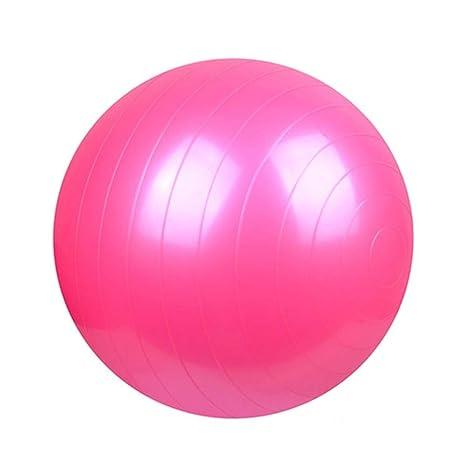 Ssery Balón de Yoga, balón de Equilibrio de 55 cm, Fitness ...