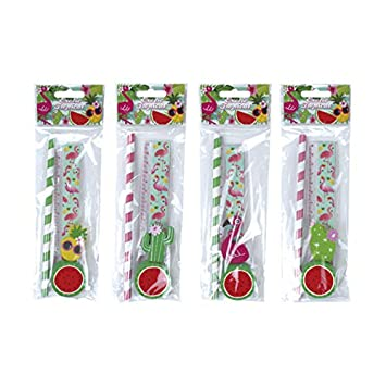 DISOK Lote de 24 Set de 4 Pcs Papelería Tropical Exotic ...