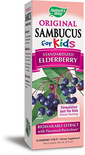Nature's Way Sambucus for Kids Bioavailable Elderberry, 8 Fl Oz