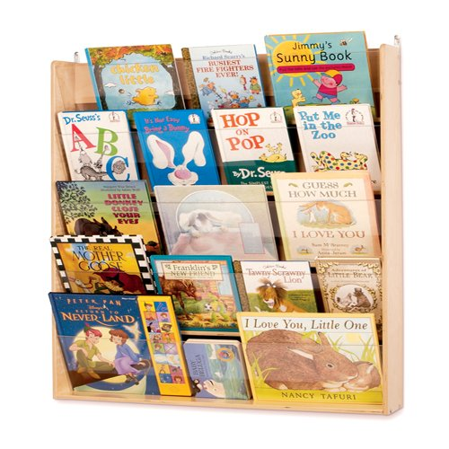 See-Thru Wall Book Display with Five Acrylic shelves