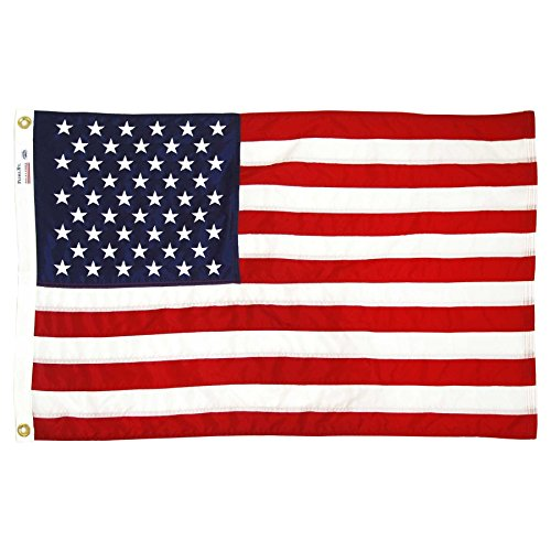 Valley Forge American Flag 2ft x 3ft Sewn Nylon Flag ()