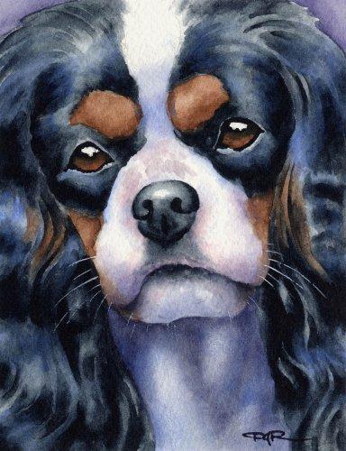 Cavalier King Charles Spaniel Art Print by Watercolor Artist DJ Rogers