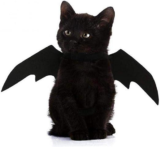 Dorime Ropa del Gato Ropa para Mascotas 3, Ropa Batwing de Disfraces pequeña Gran Perro y Gato Gatito, Ropa para Mascotas: Amazon.es: Hogar