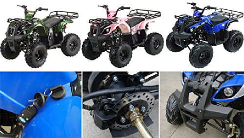 TaoTao Brand New ATA-125D Kids Gas Utility ATV for Youth - Burgundy