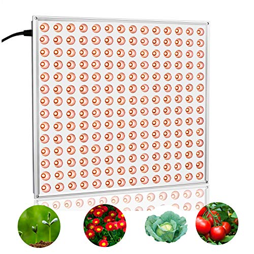 100W Led Grow Light in US - 9