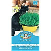 Catgrass Seeds Packet Natures Medicine for The Fussy Cat Grass Seed Amazing Magic Planter Cats Food Treats.