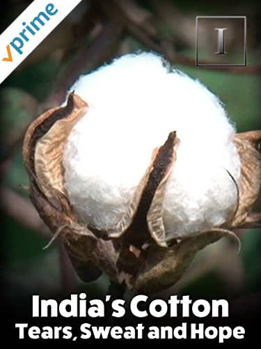 India's Cotton - Tears, Sweat and Hope