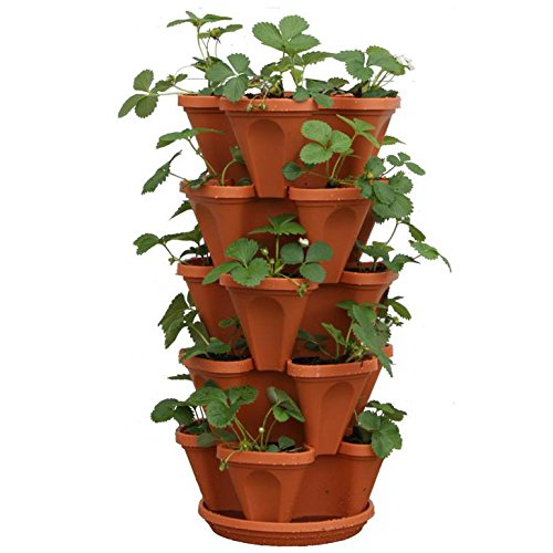 - 5-Tier Strawberry and Herb Garden Planter - Stackable Gardening Pots with 10 Inch Saucer (Terra-Cotta)