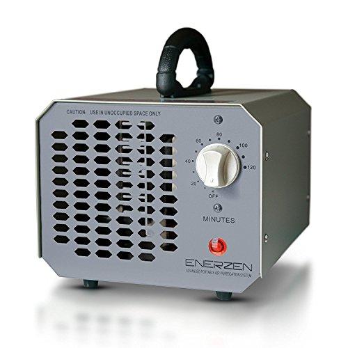 Enerzen High Capacity Commercial Ozone Generator 9,000mg Industrial Strength O3 Air Purifier Deodorizer Sterilizer (9,000mg - Gray) - Home Freshener
