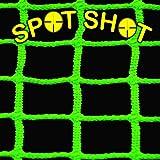 Spot Shot: Glowing Net