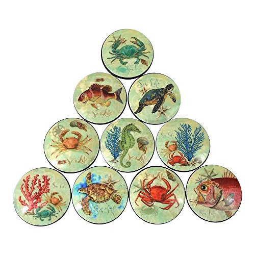 2in Twisted Cabinet Knob - Set of 10 Sea Life Oversized Cabinet Knobs
