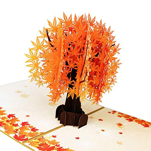 Fusolo 3D Pop Up cards, Golden Maple Tree Cards, Birthday Cards, Mom Cards, Thank you Cards, Greeting Cards (Golden Maple) -