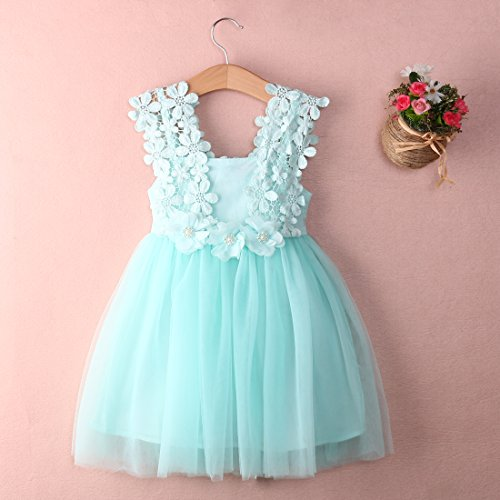 Elegant Feast Baby Girls Princess Lace Flower Tulle Tutu