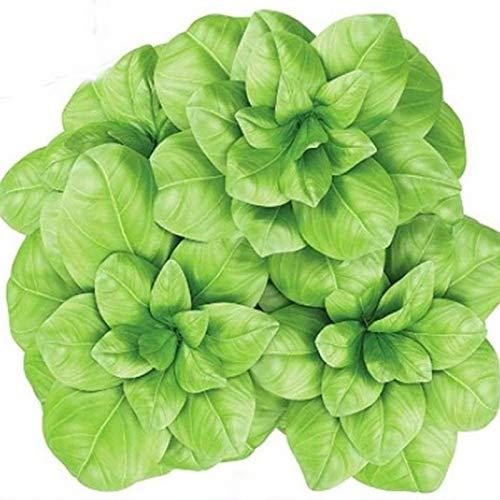 (NIKITOVKASeeds - Basil Lettuce Leaves - 400 Seeds - Organically Grown - Non GMO)