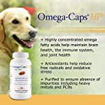 PHS Omega-Caps High-Potency (HP) Snip Tips for Medium and Large Dogs - Omega-3 Fatty Acids, Vitamins, Antioxidants - Supports Immune System, Joints, Heart, and Brain - Made in USA - 250 Capsules 11
