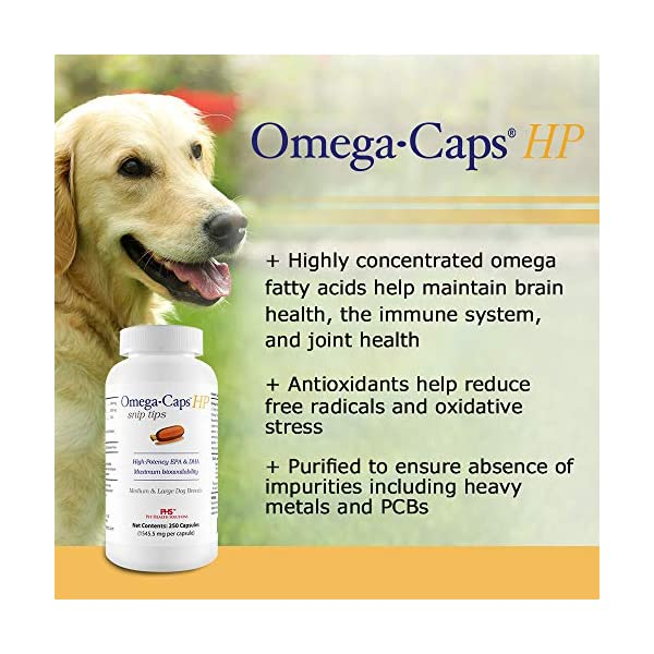 PHS Omega-Caps High-Potency (HP) Snip Tips for Medium and Large Dogs - Omega-3 Fatty Acids, Vitamins, Antioxidants - Supports Immune System, Joints, Heart, and Brain - Made in USA - 250 Capsules 4