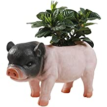 Funnuf Cute Pig Shape Flowerpot Succulent Planter Plant Pot Animal Style Resin Vase Container Black and Pink