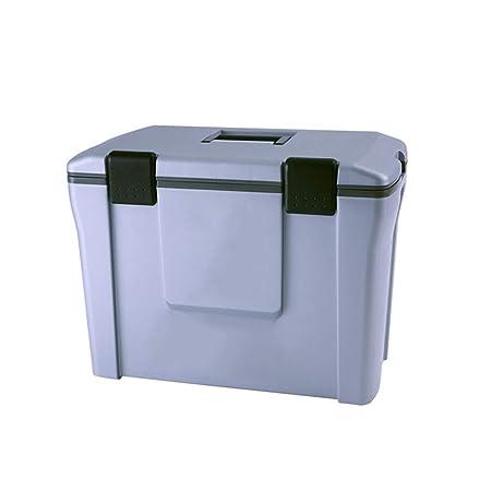 LIYANLCX - Nevera portátil pasiva de 25 litros, Nevera y ...