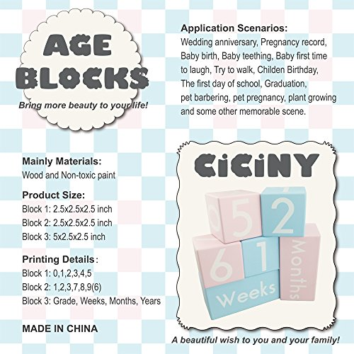 CICINY Age Blocks for Baby Pictures Wood Newborn Photography Props and Milestone Keepsake Gifts to Boy Girl Baby Or Pets (Pink) by CICINY (Image #6)