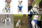 Lift & Lead 4-In-1 Helping Hand Harness for Dogs - Four Dog Harnesses in One NWT(Small)