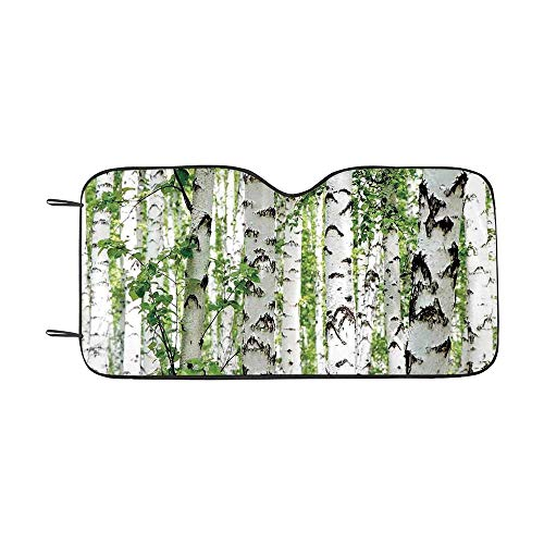 Woodland Decor Durable Car Sunshade,Birch Trees in The Forest Summertime Wildlife Nature Themed Decorating Picture for car,55