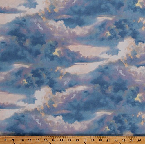 - Cotton Landscape Clouds Cloudy Sky Sunrise Sunset Silver Lining Blue Pink Purple White Nature Wind and Waves Cotton Fabric Print by the Yard (1090-83040-144)