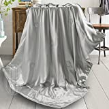 THXSILK Silk Throw with Silk Filling Inside and Out for Bed or Couch Silver Gray, 53x70