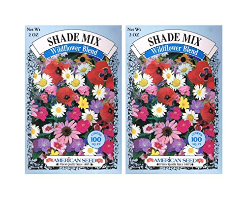 2015 Seeds - American Seed's Shade MIX Wildflower Blend - 100 Squ.ft.per Box - 2 Box - Boutique Linda