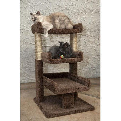 Triple Cat Perch Color: Brown, My Pet Supplies