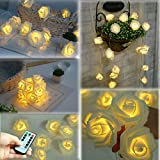 Specification:  Brand: Homeleo Product Name: Rose Flower Light LED Bulb QTY: 30 Rose Color : Pure white Lights Color : Warm white Cable Color: Transparent  Flower Diameter: 2.5 Inch / 7 CM  Total Length: 14.5ft/4.85 Meters Lead wire length : ...