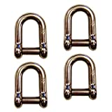5/16'' Screw Pin D Shackle w/ Hex Sink Pin Stainless Steel – 4 Pack