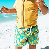 SwimZip Boys Short Sleeve Rash Guard & Swim Trunk