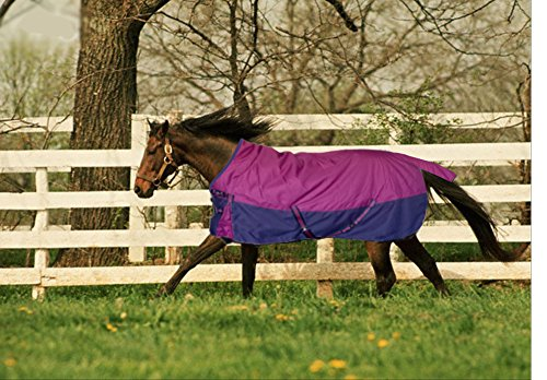 TURNOUT 1680D HORSE WINTER WATERPROOF - HORSE BLANKET 004 - Size from 69