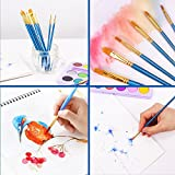 Paint Brush Set, 36 pcs Nylon Hair Brushes for