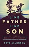 img - for Like Father, Like Son: How Knowing God as Father Changes Men by Pete Alwinson (2015-11-10) book / textbook / text book