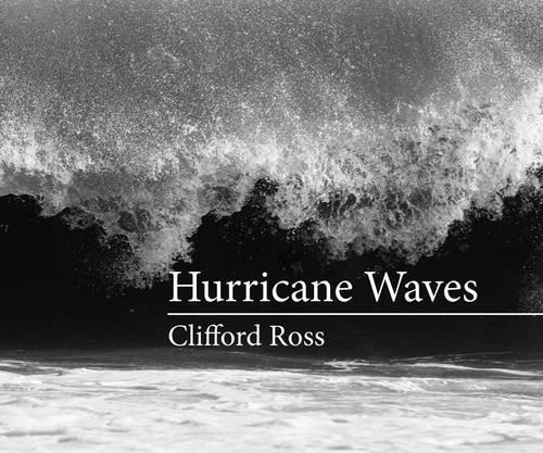 Hurricane Waves (MIT Press)