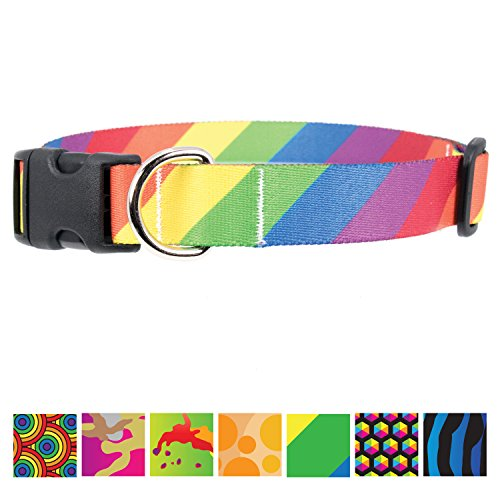 (Buttonsmith Rainbow Flag Dog Collar - Fadeproof Permanently Bonded Printing, Military Grade Rustproof Buckle, Resistant to Odors & Mildew, Choice of 5 Sizes, Made in The USA)