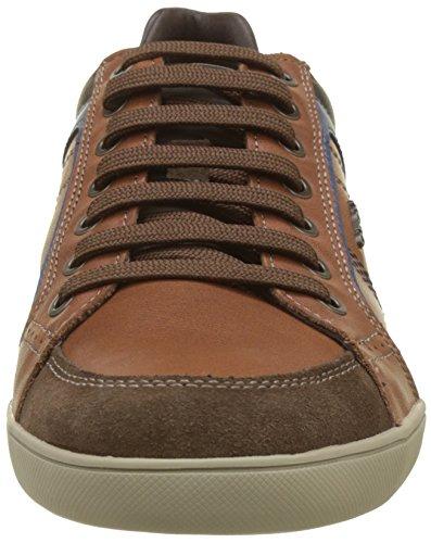 Geox U Kristof A, Sneaker Uomo Marrone (Browncotto/Ebony)