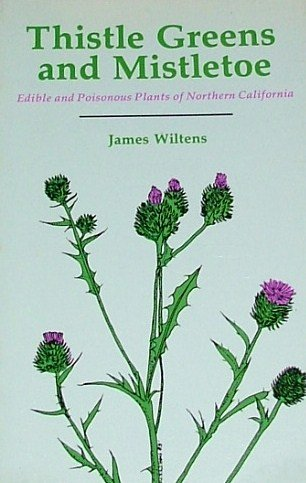 Green Thistle (Thistle Greens and Mistletoe: Edible and Poisonous Plants of Northern California)