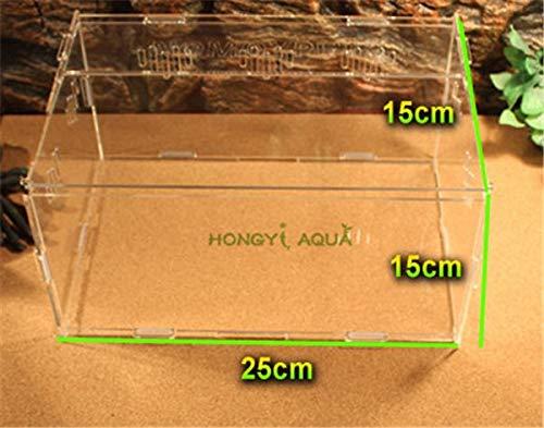Acrylic Reptile Terrarium Habitat Ideal for Larvae spiders 25 15 15, S