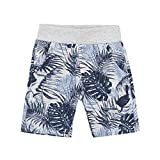 Petit Lem Big Boys' Shorts Stylish and Fun, Light Heather Gray, 4