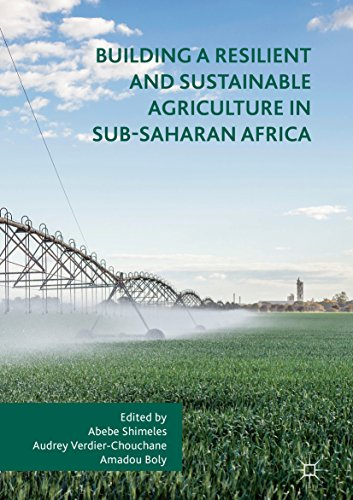 Building a Resilient and Sustainable Agriculture in Sub-Saharan Africa por Abebe Shimeles,Audrey Verdier-Chouchane,Amadou Boly