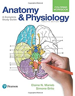Essentials Of Human Anatomy Physiology 12th Edition