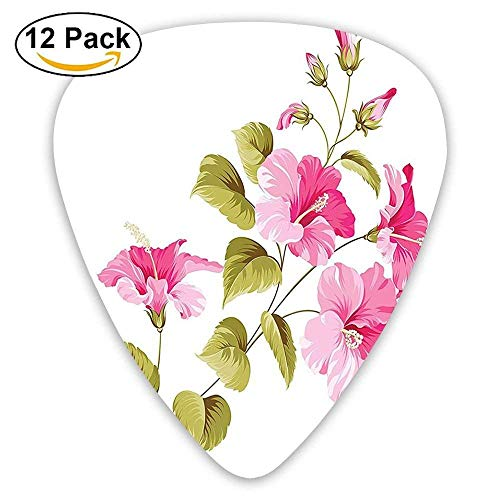 Guitar Picks Thin,Tropic Wild Hibiscus Flower Branch With Leaves Exotic Flora Concept 351 Shape Premium Picks (12 Pack) ()