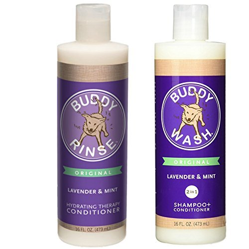 Cloud Star Shampoo and Conditioner Lavender & Mint Combo Pack for Dogs: (1) Buddy Wash 2 in 1 Shampoo + Conditioner and (1) Buddy Rinse Hydrating Therapy Conditioner (2 Bottles Total, 16 Ounces Each) by Cloud Star